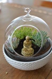 Hur sött är inte detta lilla terrarium? Ska definitivt göra ett sånt :D